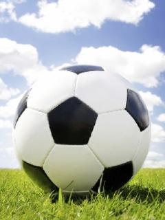 Таблица - Чемпионат города Бор по мини-футболу